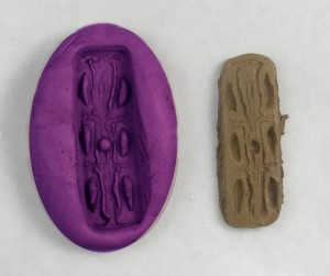 Press the clay into the mold
